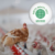 Axfoundation's Antibiotic Criteria awarded Venture of the Year by Sustainable Brand Index